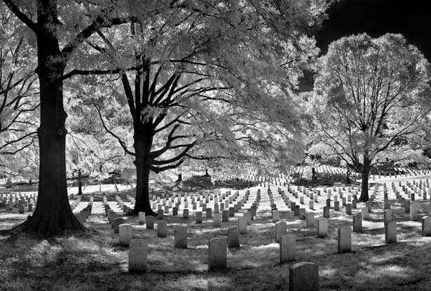 arlington-cemetery-615