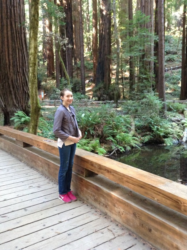 Grace Redwoods