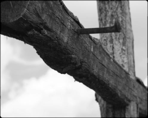 rugged-cross